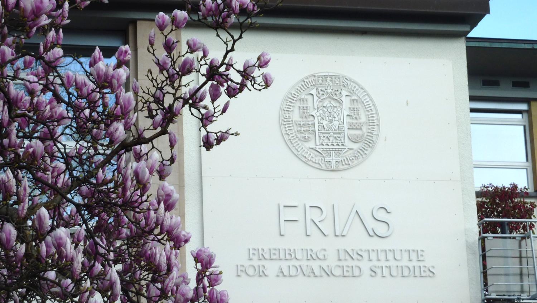 FRIAS-Gebäude mit Magnolie