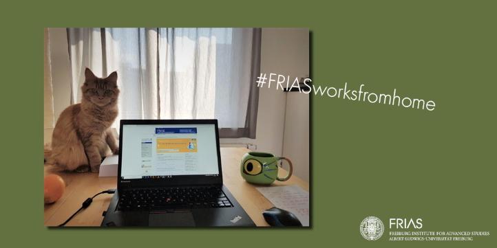 #FRIASworksfromhome