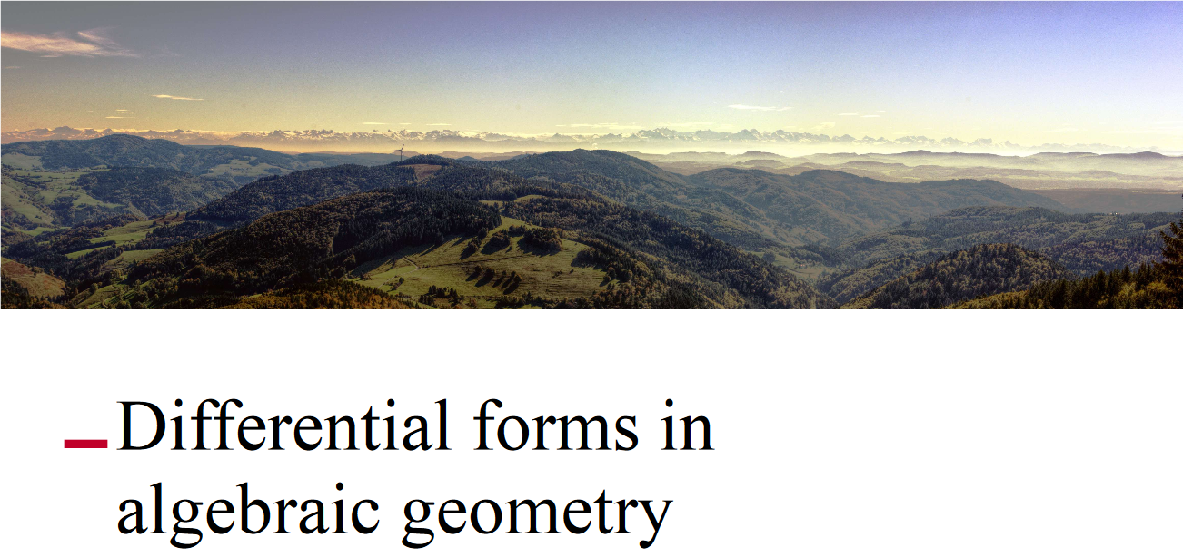 Differential forms in algebraic geometry