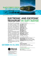 "8. Black Forest Focus zum Thema ""Electronic and Excitonic Transport in Soft Matter"" erfolgreich beendet"