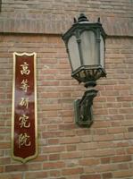 China Institutes of Advanced Studies